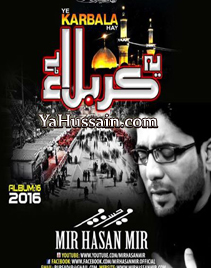 Nohay 2016/17 By Mir Hasan Mir :: www YaHussain com